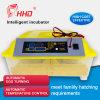 56 Ei-vollautomatischer Miniei-Inkubator mit guter Qualität