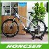 Hs 026A 고도 도로 자전거 금속 선반 지면 자전거 주차 대