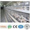 Горячее гальванизированное оборудование цыплятины международного стандарта клетка малых или слоя цыпленка курочки