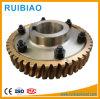 Endlosschraube und Rad für Aufbau-Hebevorrichtung-Reduzierstück-Getriebe