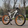 8funモーターを搭載する500W山の電気バイク