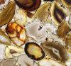 Нов и цена камня агата Gemstone международных сбываний желтое