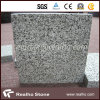 Bush Hammered Padang Dark / Sesame Black / Dark Grey G654 Granite Tile à prix compétitif