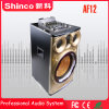 12'' Shinco multimedia inalámbrico Bluetooth Altavoz Prefessional activo