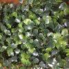 40X60cm Größen-Grün-Wand-künstlicher Garten