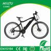 Bicicleta elétrica de 350W com eletricidade elétrica de 29