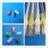 3m Cable UTP CAT6