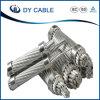 0.6/1 kilovoltios descubren gastos indirectos del cable de AAC todo el conductor de aluminio