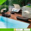 Новый салон Bed Style Viro Wicker с Sunroof