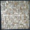 Irisierende chinesische Fluss-Shell-Mosaik-Fliese (HMP61)