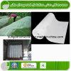 Tissu résistant UV de Nonwoven d'agriculture