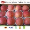 Fresco de alta calidad de manzana Fuji