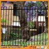 Rete fissa del metallo del giardino galvanizzata parte superiore residenziale dell'arco