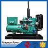 De open Generator Ricardo Engine van het Type 30kw