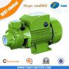 Factory Vortex Self Priming Pump 0.5HP Bombeamento de água