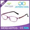 2015 de kleurrijke Tr90 Recentste Manier Eyewear van de Glazen van het Schouwspel