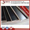 O Giga competitivos preços de contraplacado de material de construção do prédio