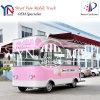 Camions mobiles électriques de nourriture de la Chine pour la glace Cream/BBQ/Snack