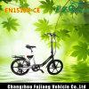 Chino mini bici eléctrica de 20 pulgadas con la palanca de freno