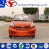 Véhicule électrique/véhicule de la Chine de véhicule électrique petits