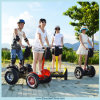 2つの車輪の電気スクーターの中国のスクータ(ESIII)