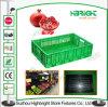 Foldable di plastica Crate Plastic Collapsible Crate per Storage