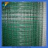 Grüner PVC beschichteter geschweißter Maschendraht Rolls