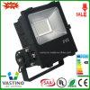 Hoge Power 70W 100W 150W 200W meanwell-Driver LED Flood Light