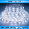 12V открытый водонепроницаемый 5050 LED газа