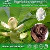 Выдержка расшивы Magnolia 100% естественная, выдержка расшивы Officinalis Magnolia, Officinal выдержка расшивы Magnolia