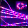 LED Flexible Grow Strip Light für Plant