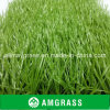Football dell'interno Artificial Grass con Sand