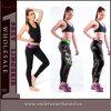 호주 여자의 운동 Activewear 스포츠 착용 체조 Legging 타이츠 (TYDC018)