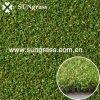 Sungrass (PP-015DS)からの人工的な草