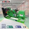 электричество Ce 50kw аттестованное ISO приводит комплект в действие генератора Biogas