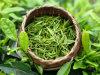 Il GMP ha certificato il gallato naturale di Epigallocatechin dell'estratto del tè verde di alta qualità