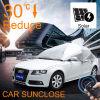 Sunclose bildete in China-vorderes Fenster-Sonnenschutz-faltendem Auto-Zelt-Motorrad-Schutz