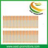 Eco Friendly Recycle Paper Ball Pen for Promotion