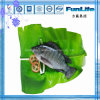 イズミダイの全円形のOEMによってフリーズされる魚のシーフード