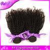 モンゴルのアフリカのねじれた巻き毛のバージンの毛3束の巻き毛の織り方100%の人間の毛髪の拡張ねじれた巻き毛のバージンの毛
