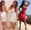 2014 zweiteilige reizvolle Frauen Bodycon Verband-Kleid-Berühmtheits-Verband-Kleider (ZZ-20130031)