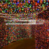 Lichten van de Tunnel van Kerstmis van LEIDENE de Kleurrijke Lightup van het Koord voor Decoratie
