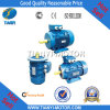 Manufacturer profissional de Motor Y2 (Y2-802-2)