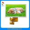 5,0-дюймовый 800 (RGB) x 480p TFT дисплей с 250 кд/м2 яркость и RGB интерфейс