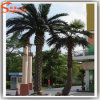 Outdoor Ornamental Plants Artificial Date Palm Tree