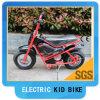 Электрическое Quad Bike для Kids 24V