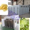 De hete Garnalen van de Verkoop en de Drogende Machine van het Dehydratatietoestel van het Fruit