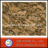 Azulejo Polished importado de la tapa de la vanidad de Giallo Fiorito del granito (DES-GT026)