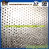 Perforated de aluminio Metal Mesh para Decorative