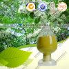 Uittreksel 95% van Japonica van Sophora Quercetin